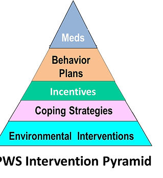 The PWS Intervention Pyramid.jpg