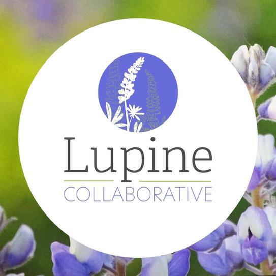 Lupine_1.jpg