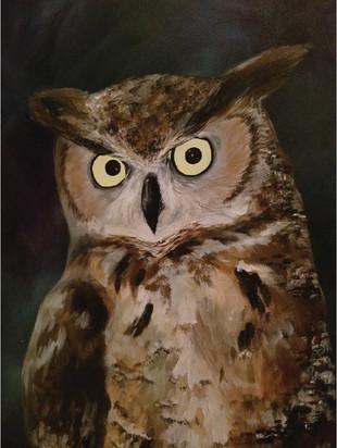 Owl_full.jpg