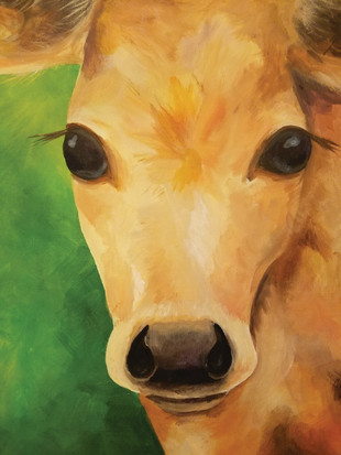 cow_full.jpg