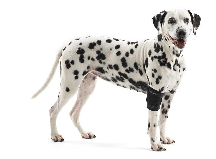 KRUUSE Rehab Elbow Protector