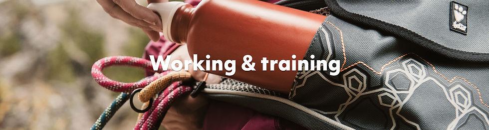 Working & Training.jpg