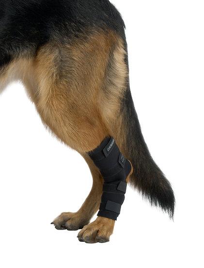 KRUUSE Rehab Hock Protector