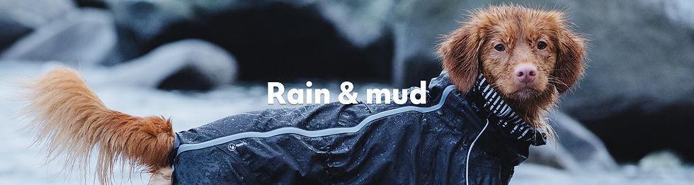 Rain & Mud.jpg