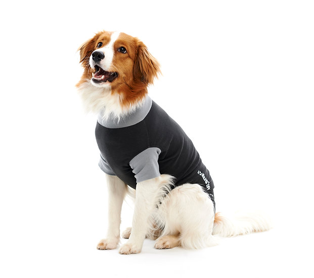 BUSTER Post Surgery Recovery Body Suit for Dogs