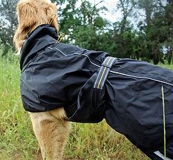 http://www.trektechblog.com/2016/05/rain.html hurtta dog torrent raincoat