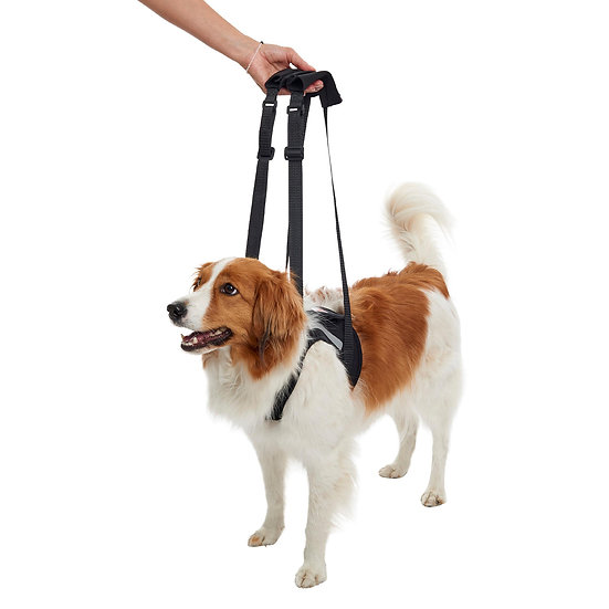 KRUUSE Rehab Lifting Harness for Dogs, Front Legs