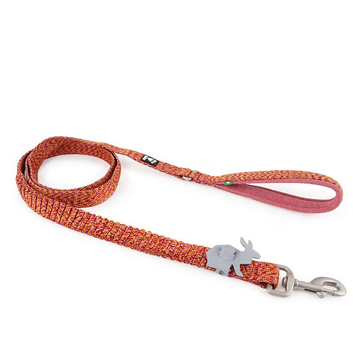 RAZZLE-DAZZLE SPRING LEASH