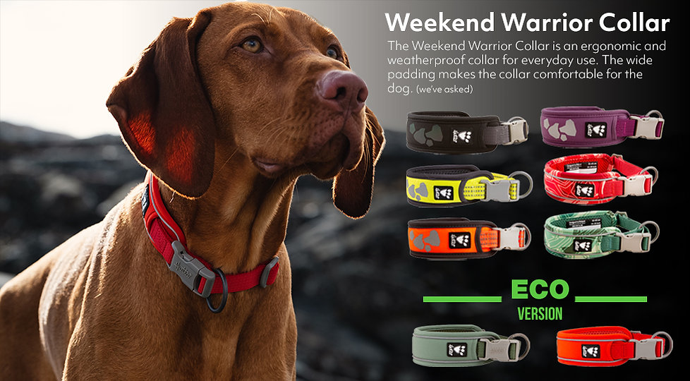 Weekend Warrior Collar.jpg