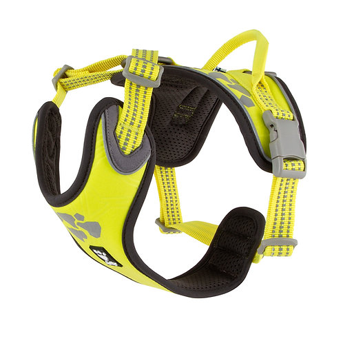 WEEKEND WARRIOR HARNESS