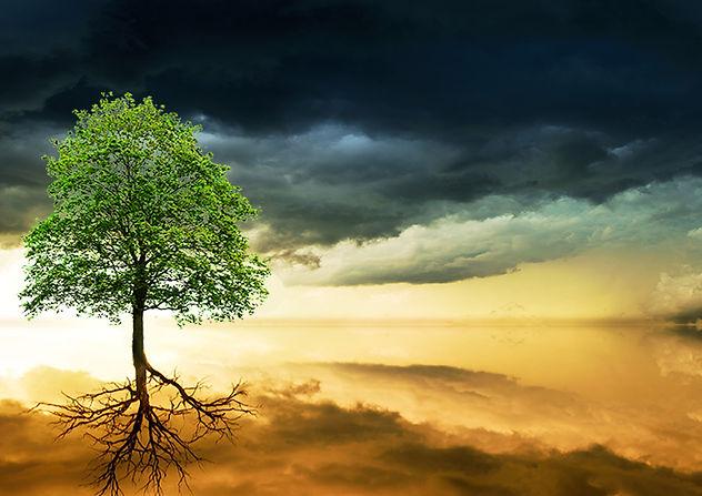 Teaser - Spiritual Growth.jpg