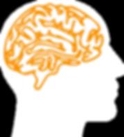 brain4-Rfacing.png