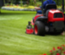 Professional Grounds Maintenance Services