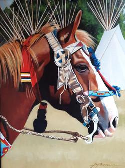 Pow Wow Pony