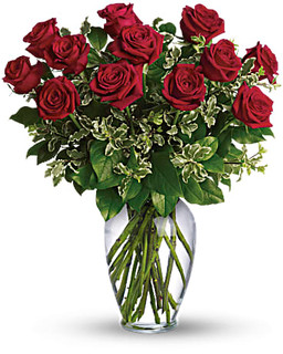 Dozen Roses ~ Your Choice Color ~ $94.95