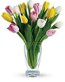 Mixed Tulips, Pink, White, Yellow ~ $69.