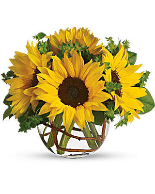 Sunny Sunflowers ~ $49.95
