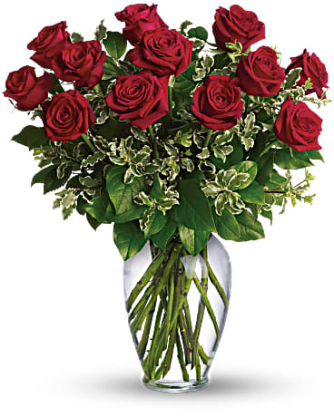 Dozen Roses ~ Your Choice Color ~ $74.99