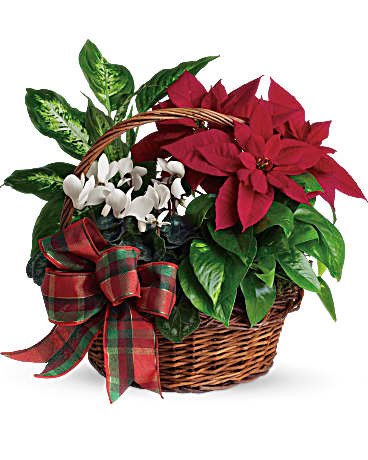Holiday Garden Basket ~ $54.99 and up