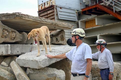 FEMA Pups-15.jpg
