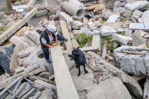 FEMA Pups-5.jpg