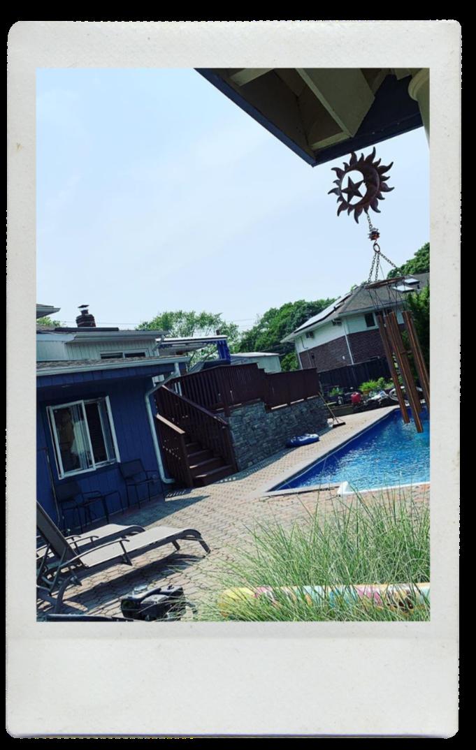 Justin Joey hoping to adopt - Summer yard