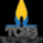logo-tceb-transparant.png