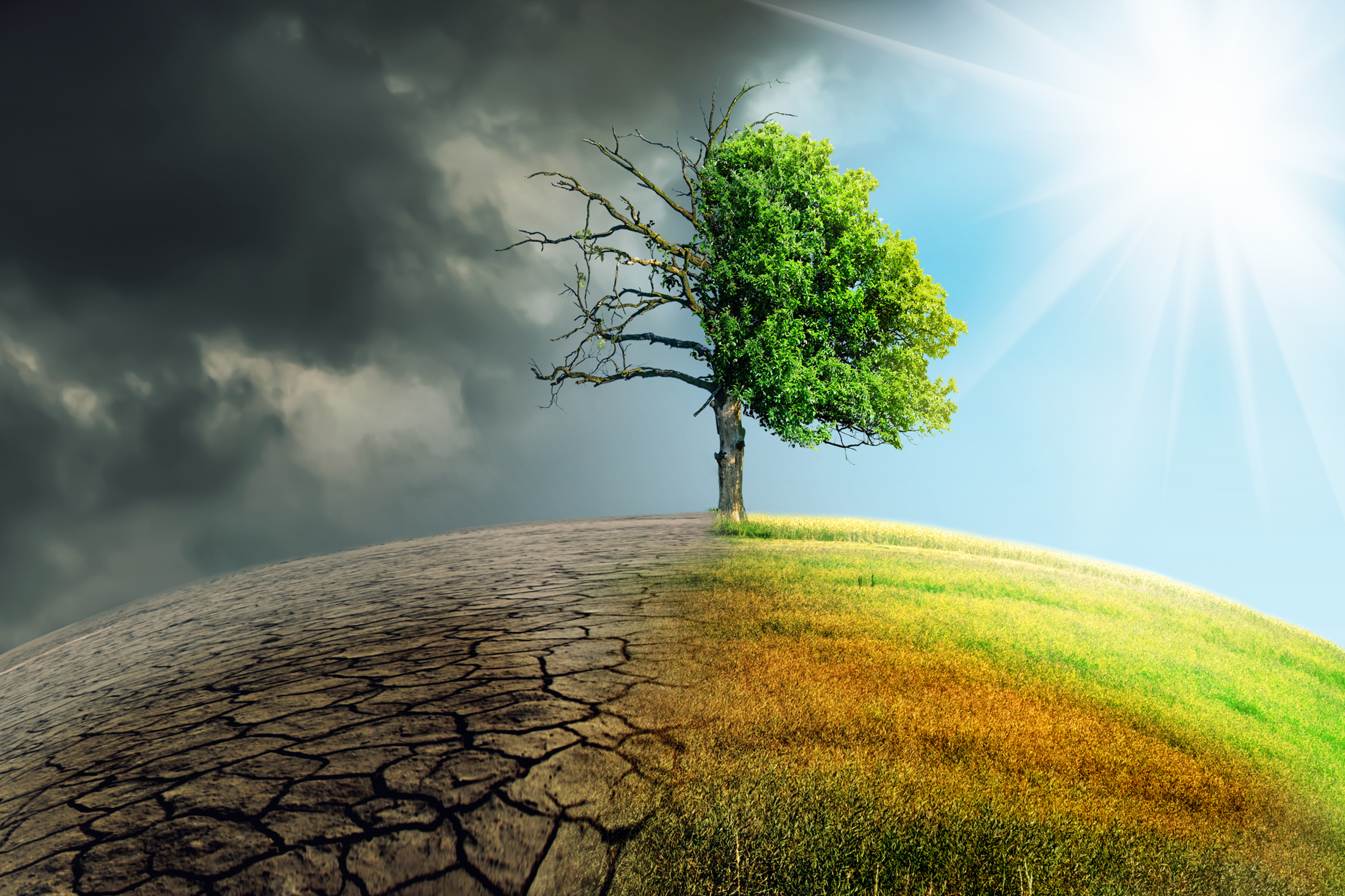 Living in a disrupted climate