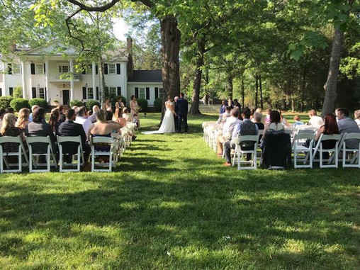 tree wedding no arbor.jpg