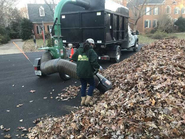 leaf pickup.JPG
