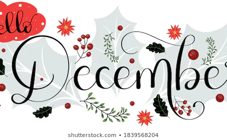 December's Transition in Place Newsletter