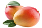 Lien Mangues