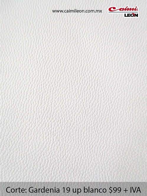 Gardenia19 up blanco
