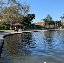 Polliwog Park