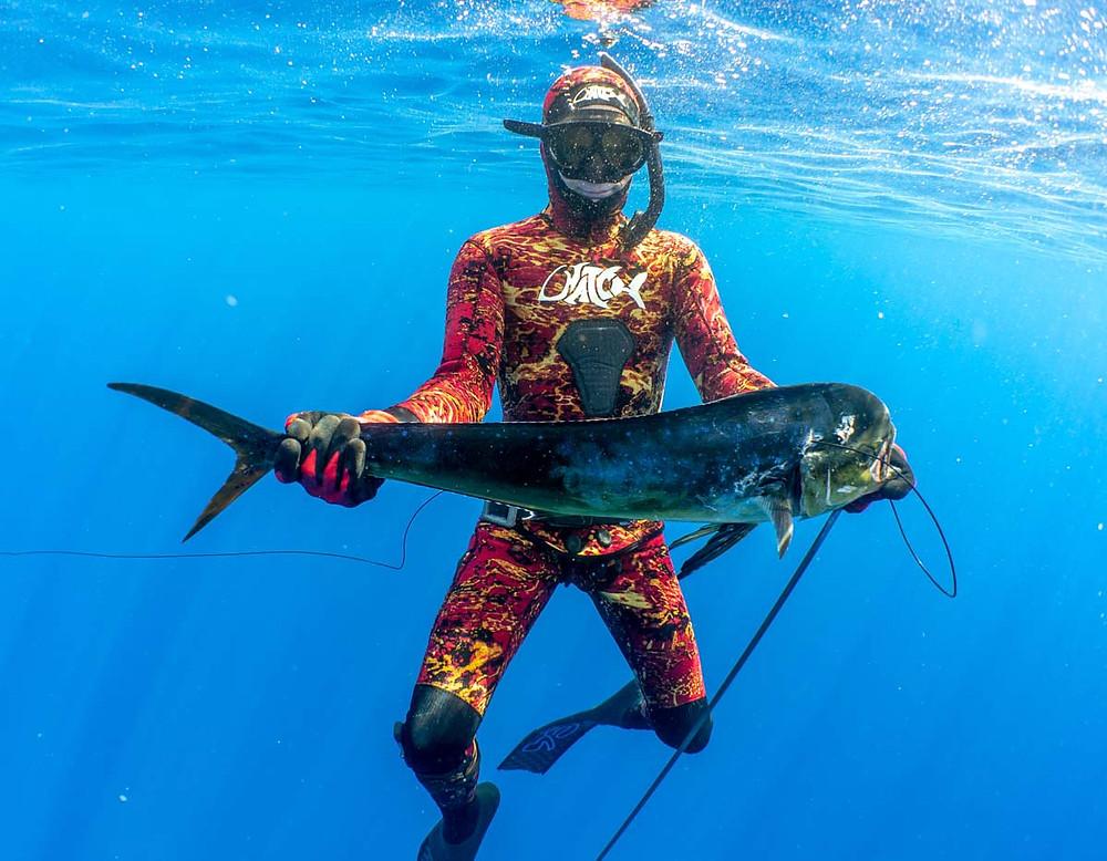 Pelagic Spearfishing Kona Hawaii | Kona Freedivers