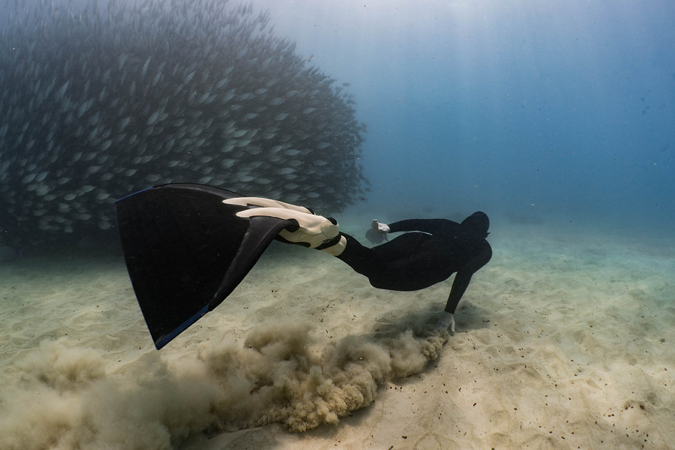 freediving-hawaii-with-kona-freedivers-5