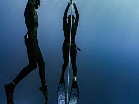Don't Waste your Money on a Freediving Course