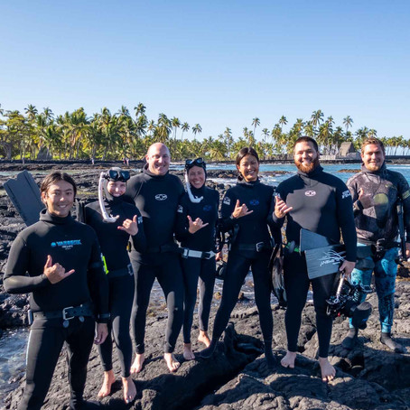 Learning to Freedive, Top 5 Reasons Why You Should