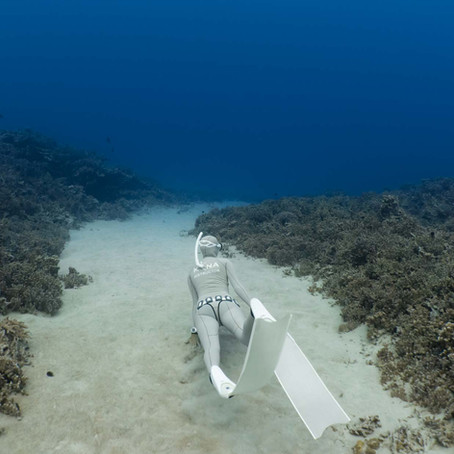 Why learn to Freedive in Hawaii?