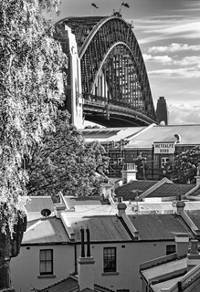 Coathanger Rising - Sydney, New South Wales