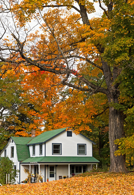 Falling for New England - Jackson, New Hampshire, USA