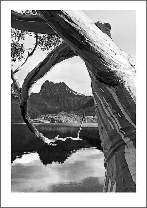 Framed - Cradle Mountain National Park, Tasmania