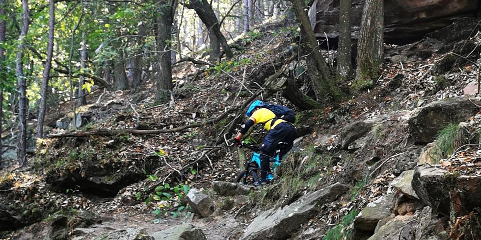 E-MTB Trail & Technik-Camp Pfalz
