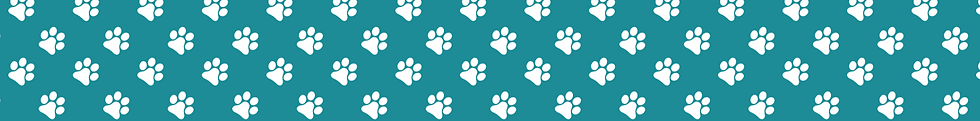 dog-paw-pattern.png
