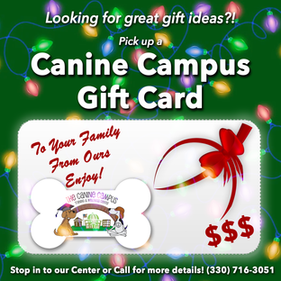 christmas giftcards.png