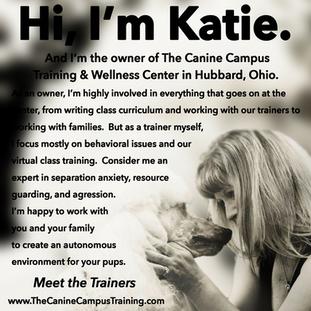 Katie Matole - Costello .png