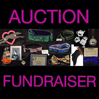May Facebook Auction Fundraiser 5/12-5/26