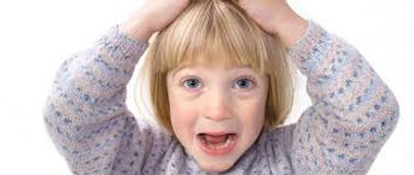 piolho pediculose couro cabeludo