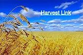Harvest%2520link_edited_edited.jpg