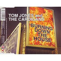 Burning Down The House with The Cardigans Gut Records 1999